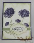 Field Flowers-5
