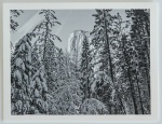 Yosemite Collection-3